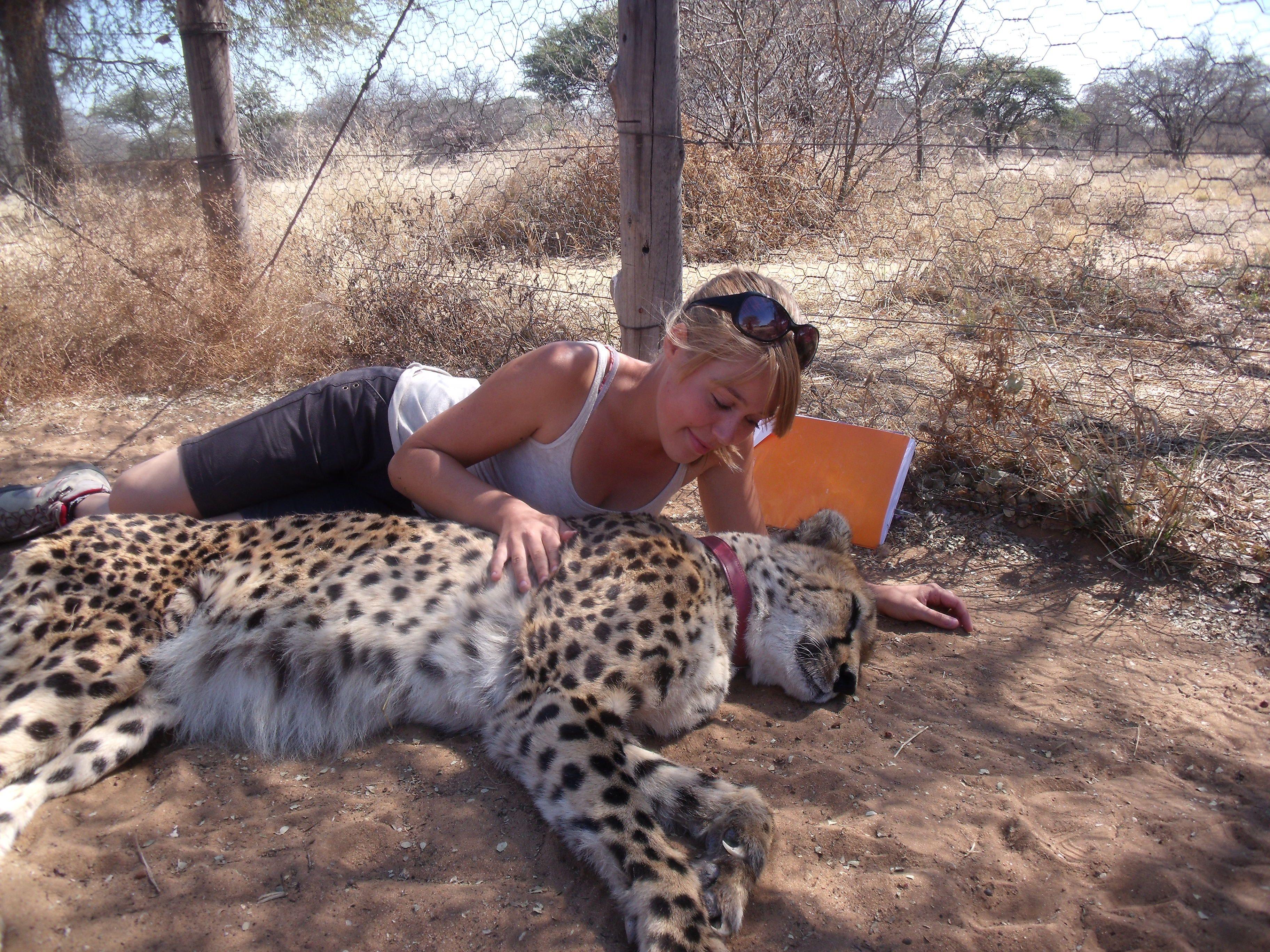 Rencontre passion animaux